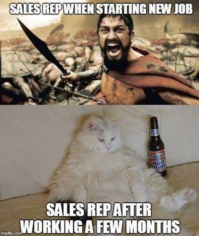 reality sales meme