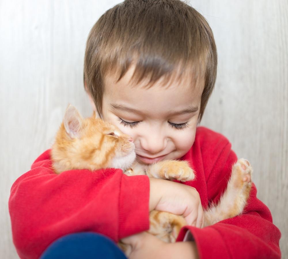 Portrait of child holding yellow kitty cat.jpeg